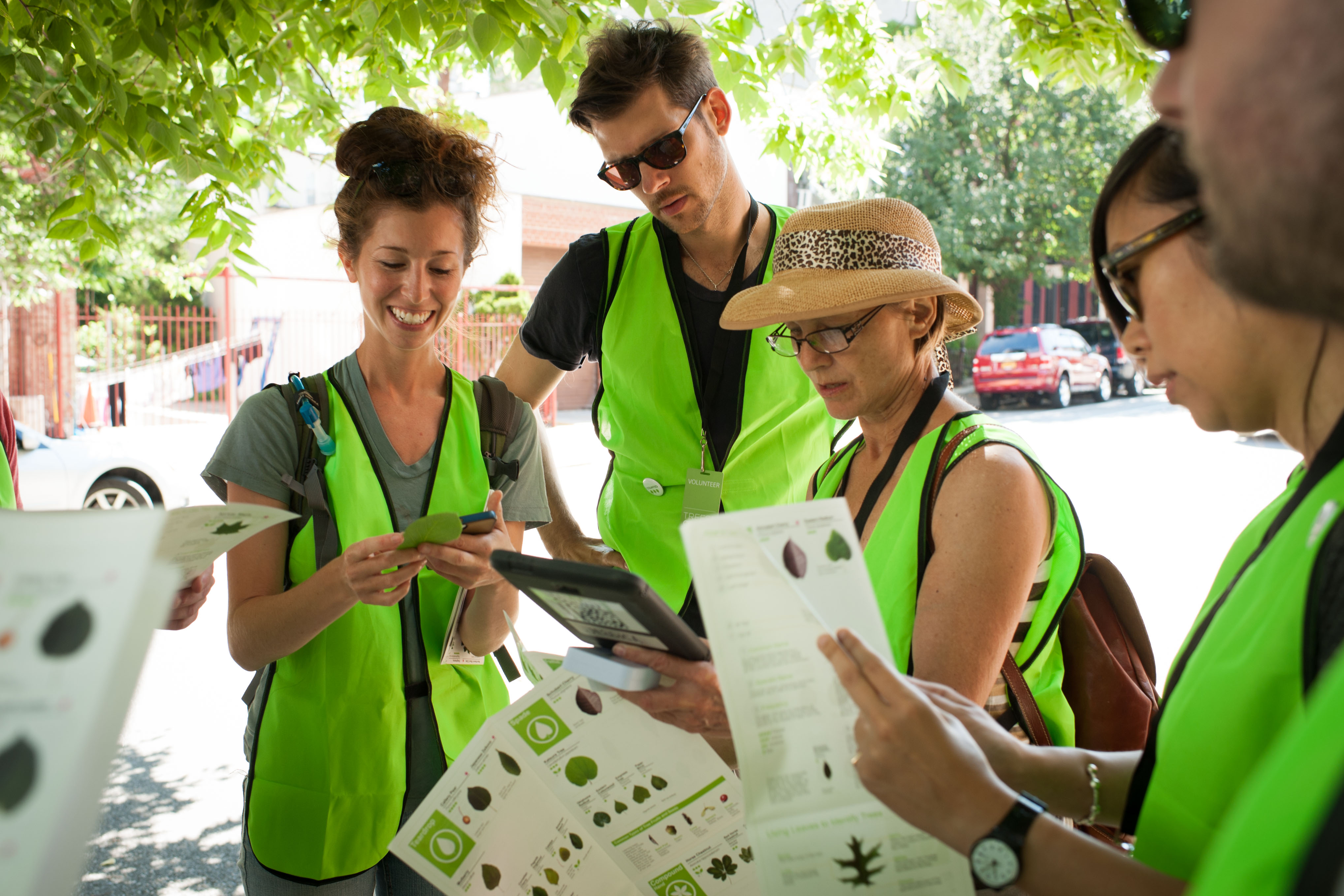 Trees Count! & NYC Street Tree Map